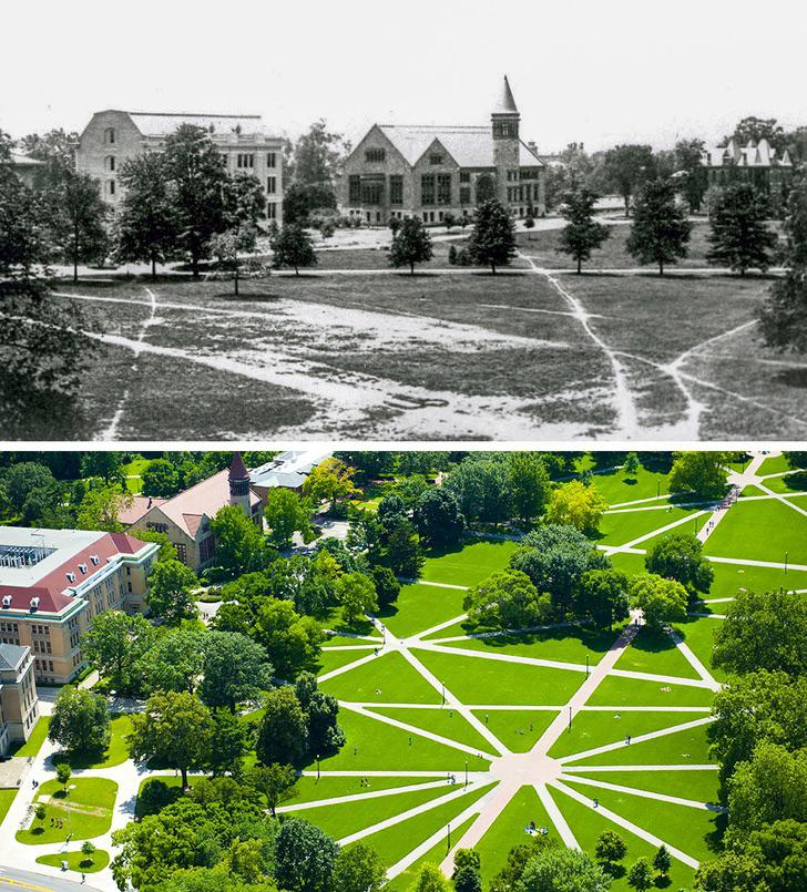 Photo showing before and after of how desire paths in ohio university led to the current paved pathways conforming to the desire paths.