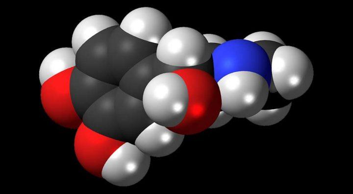 Adrenaline - organic acid